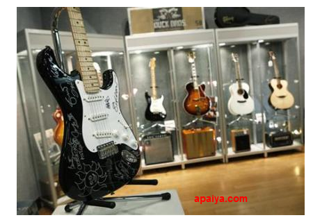 Ini Alat-alat Musik Termahal di Dunia apaiya.com